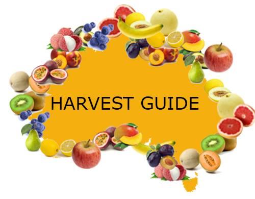 Fruit picking seasons australia harvest calendar.